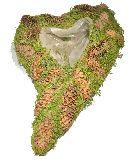 Moosherz mit Zapfen GRÜN-BRAUN Moos-Zapfen 31x22 cm