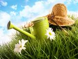Frühjahr