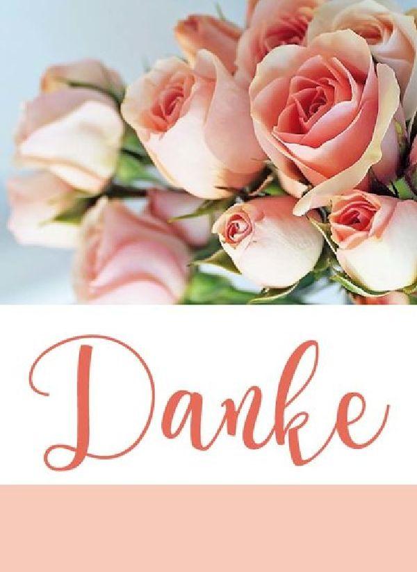 Minikarten Rosa / Danke Vanilla - mit Klammer