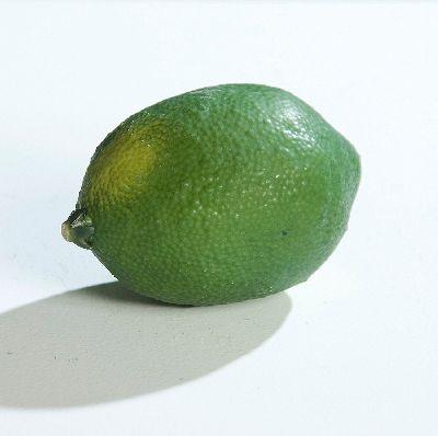 Limone GRÜN 65033 8,5cm Dekoobst